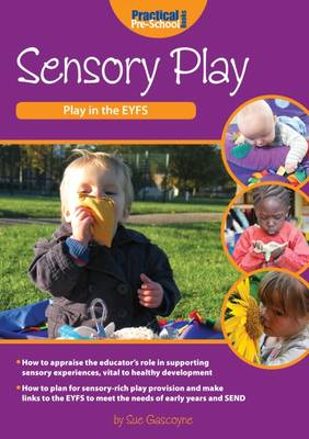 Sensory Play - Play in the EYFS (Paperback)