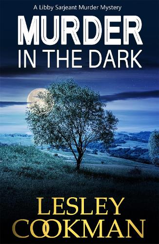 Murder in the Dark - A Libby Sarjeant Murder Mystery Series 12 (Paperback)