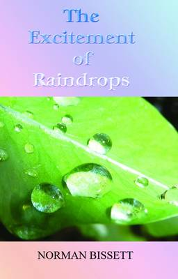 The Excitement of Raindrops (Paperback)