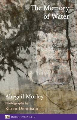 The Memory of Water (Paperback)