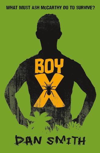 Boy X (Paperback)