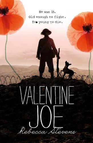Valentine Joe (Paperback)