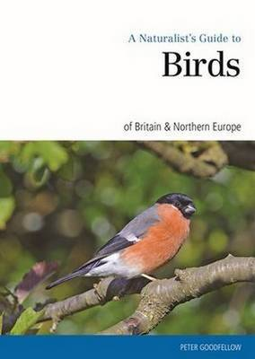 Naturalist's Guide to the Birds of Britain & Northern Ireland (Paperback)