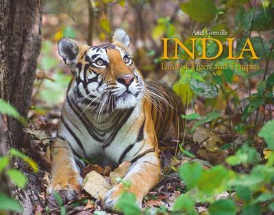 India: Land of Tigers and Temples (Hardback)