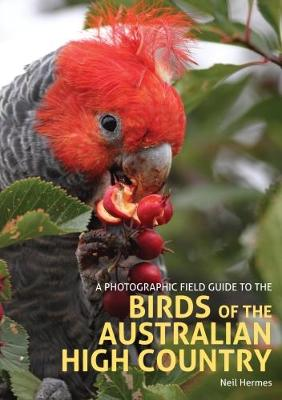 A Photographic Field Guide to the Birds of the Australian High Country (Paperback)