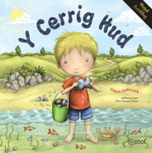 Cerrig Hud, Y (Paperback)