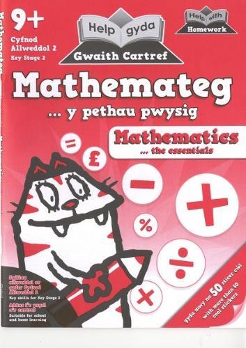 Help gyda Gwaith Cartref - Mathemateg, Y Pethau Pwysig (Paperback)