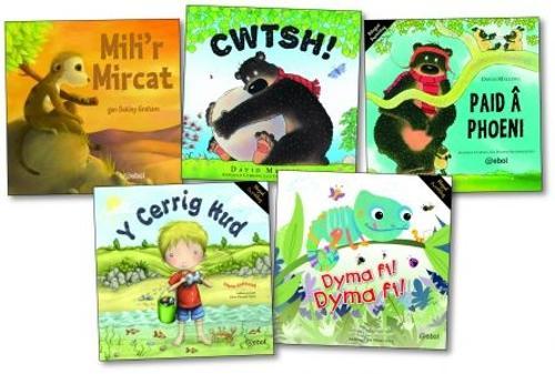 Cyfres Mynydd Troed - Y Pecyn/Bilingual Story Books - The Pack (Paperback)