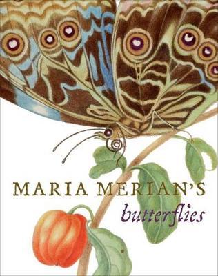 Maria Merian's Butterflies (Hardback)