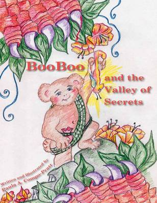 Booboo and the Valley of Secrets (Hardback)