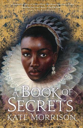 A Book of Secrets (Hardback)