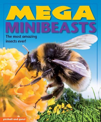 Mega Minibeasts - Mega Books (Paperback)