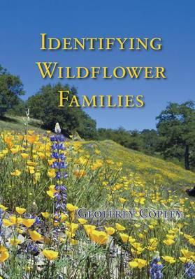 Distinguishing Wild Flower Families (Paperback)