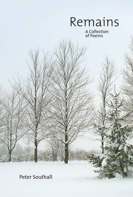 Remains: A Collection of Poems (Paperback)