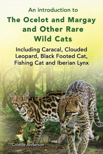 An Introduction to the Ocelot and Margay and Other Rare Wild Cats Including Caracal, Clouded Leopard, Black Footed Cat, Fishing Cat and Iberian Lynx (Paperback)