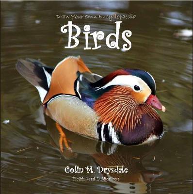 Draw Your Own Encyclopaedia Birds - Draw Your Own Encyclopaedia 2 (Paperback)