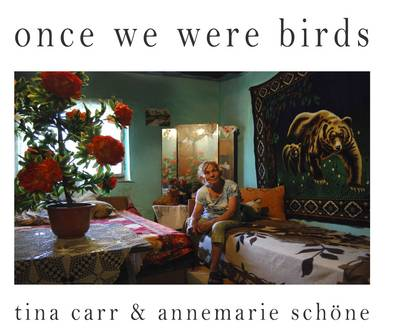 Once We Were Birds: The Roma, Gypsies and Travellers Today (Hardback)
