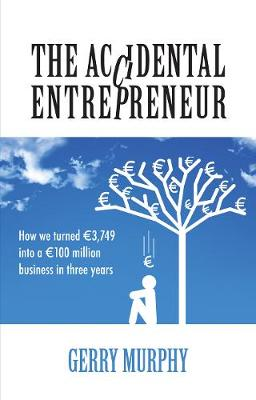 The Accidental Entrepreneur: How We Turned 3,749 into a 100 Million Business in Three Years (Paperback)