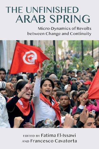 The Unfinished Arab Spring: Micro-Dynamics of Revolts between Change and Continuity (Hardback)
