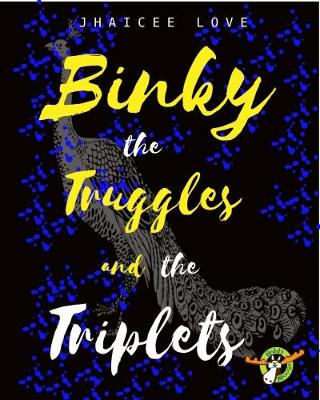 Binky the Truggles and the Triplets - Binky 2 (Paperback)