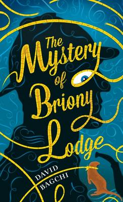 The Mystery of Briony Lodge (Hardback)