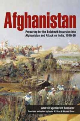 Afghanistan: Preparing for the Bolshevik Incursion into Afghanistan and Attack on India, 1919-20 - Helion Studies in Military History (Paperback)