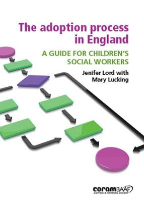 The Adoption Process In England (Paperback)