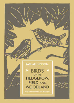 Birds of the Hedgerow, Field and Woodland (Paperback)