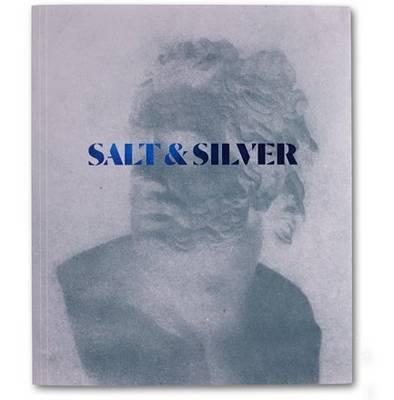 Salt & Silver (Paperback)