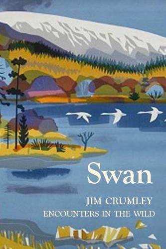 Swan (Hardback)