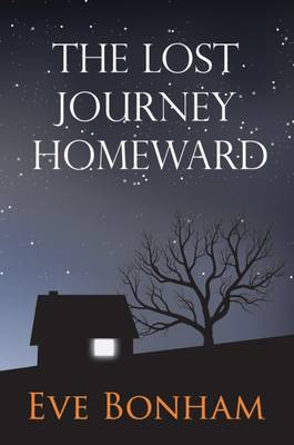 The Lost Journey Homeward - Adventures 21 (Hardback)