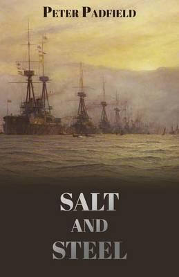 Salt and Steel (Paperback)