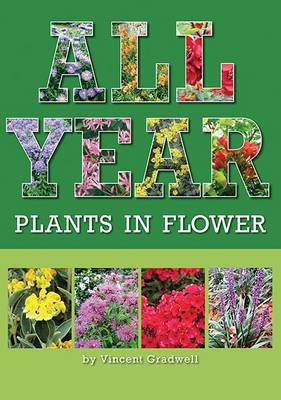 All Year: Plants in Flower (Paperback)