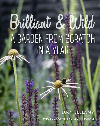 Brilliant and Wild: A Garden from Scratch in a Year (Hardback)