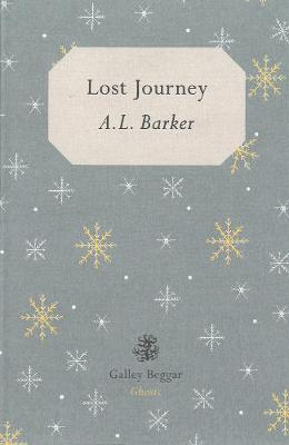 Lost Journey (Paperback)