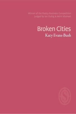 Broken Cities (Paperback)