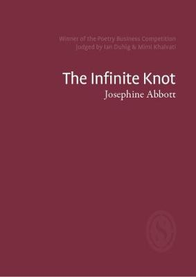 The Infinite Knot (Paperback)