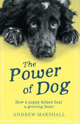 The Power Of Dog: An Evening With Andrew Marshall