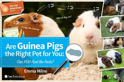 Are Guinea Pigs the Right Pet for You: Can You Find the Facts? - Pet Detectives (Paperback)
