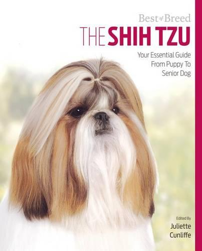 Shih Tzu Best of Breed (Paperback)