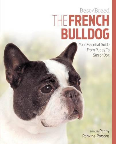 French Bulldog Best of Breed (Paperback)