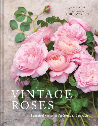 Vintage Roses: Beautiful varieties for home and garden (Hardback)