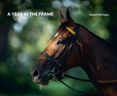 A Year In The Frame (Hardback)