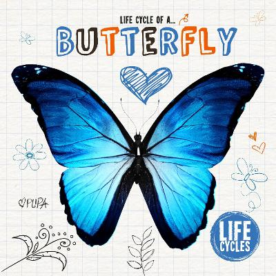 Life Cycle of a Butterfly - Life Cycles 2 (Hardback)