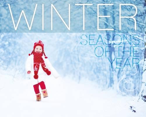 Winter - Seasons of the Year (Hardback)