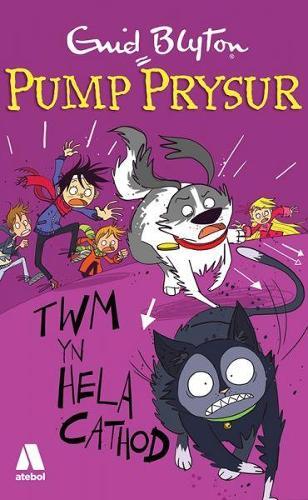 Pump Prysur: Twm yn Hela Cathod (Paperback)