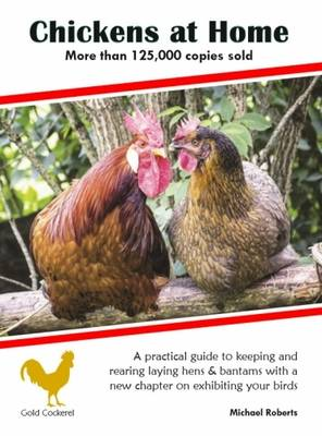 Chickens at Home (Paperback)