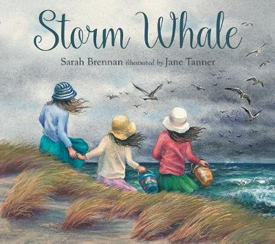 Storm Whale (Paperback)