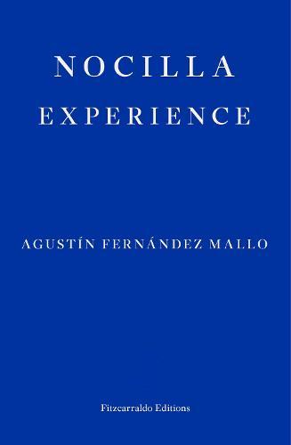Nocilla Experience (Paperback)