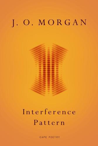 Interference Pattern (Paperback)